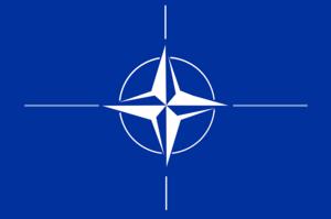 Палата представників схвалила законопроект, який не дасть Трампу вивести США з НАТО