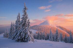 ДСНС попередила про загрозу сходу снігових лавин на Прикарпатті