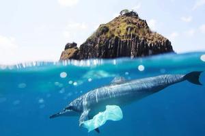 Як позбутися світової проблеми з пластиком: дилема великого бізнесу