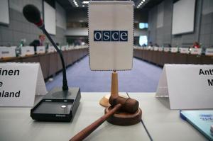 РФ все ж направить своїх спостерігачів на вибори в Україні – МЗС РФ