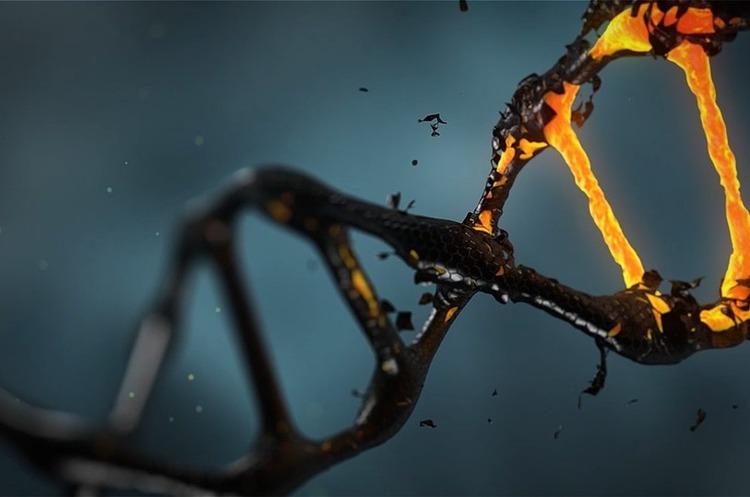 Китай вирішив ввести правила з генного редагування після скандалу із народженням генно-модифікованих дітей