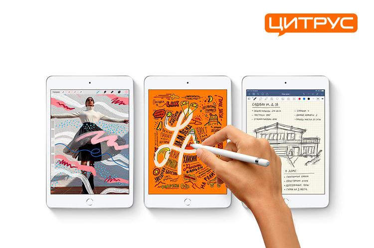 «Цитрус» назвал цены на новинки Apple iPad mini и iPad Air