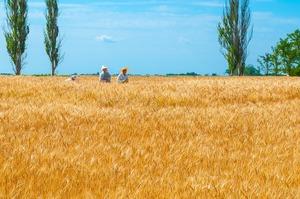 Україна опинилась у кінці рейтингу найщасливіших країн світу