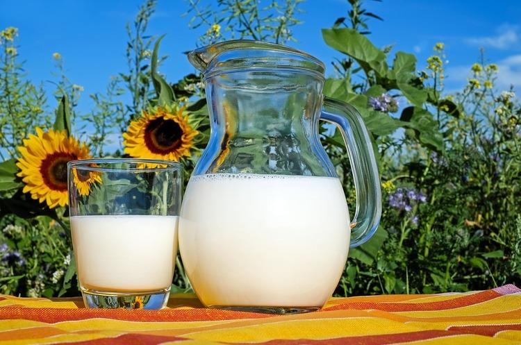 Виручка від експорту молочних продуктів скоротилася на 22%