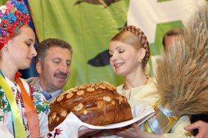 Кандидатская по экономике. Юлия Тимошенко и аграрии