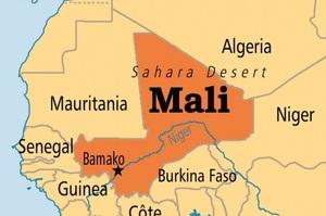 Невідомі напали на селище в Африці і вбили 134 людини