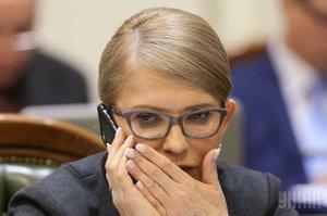 Кандидатская по экономике. Юлия Тимошенко и ее бизнес-партнеры