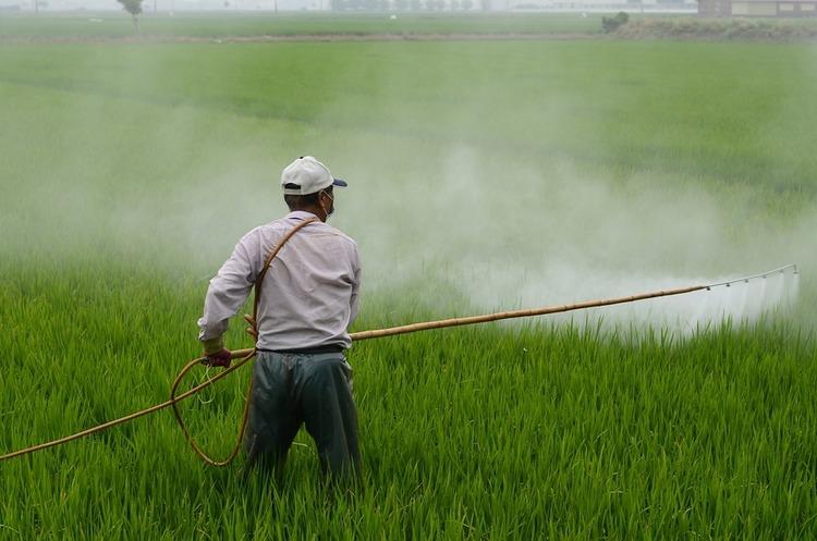 Суд зобов'язав Monsanto виплатити понад $80 млн онкохворому