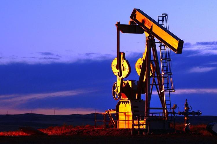 Кто покупает нефтегазовые участки на ProZorro