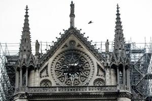 Туристів допустили до Собору Паризької Богоматері