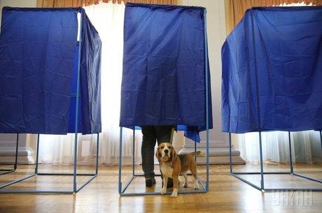 Не в ім'я, а всупереч: чому протестний електорат – ненадійний союзник