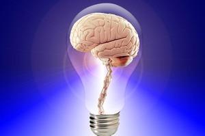 Складний людський мозок: про помилкові спогади та «шаблезубих пінгвінів»