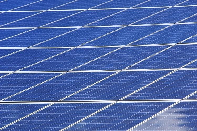 Вартість «зеленої» енергетики знизиться на 30-35% в Україні – депутат ВР