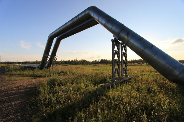 «Укртранснафта» вимагає від РФ компенсації за брудну нафту з «Дружби»