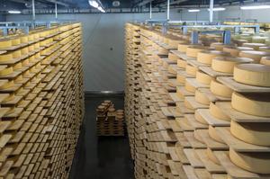 Lactalis купує італійського виробника сирів
