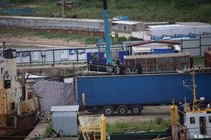Поставки китів у Китай скасовано: російських белух і косаток випускають в море після скандалу