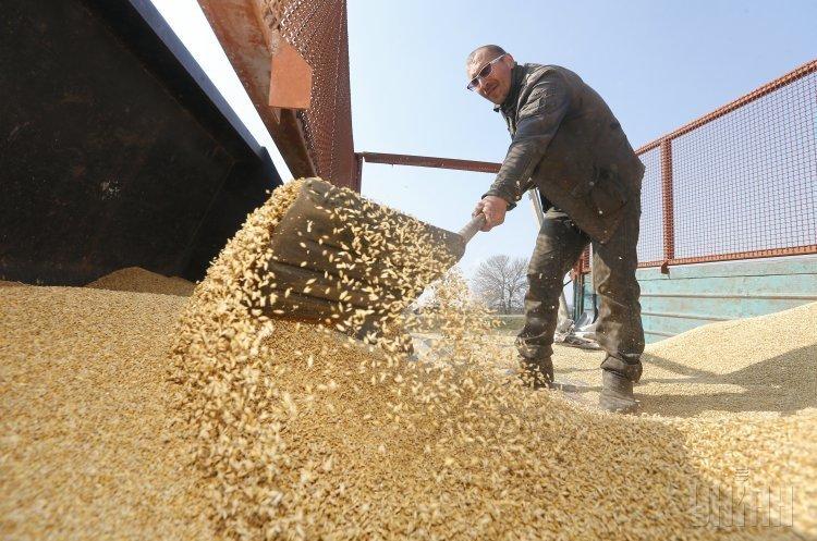 Инфографика: как Украина торговала зерном урожая 2018 года