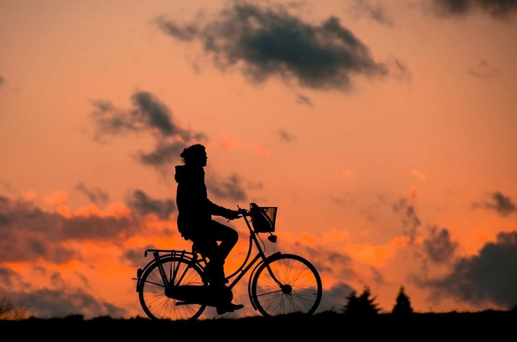 Столичну мережу «bike-sharing» розширять до 264 пунктів прокату