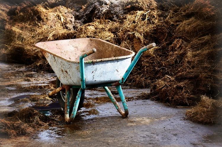 Кінці в поле: хто і як краде агрохімію в Україні
