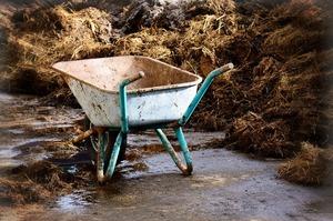 Концы в поле: кто и как крадет агрохимию в Украине
