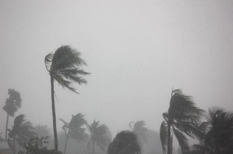 Нафтовидобуток у Мексинанській затоці впав наполовину через тропічний шторм