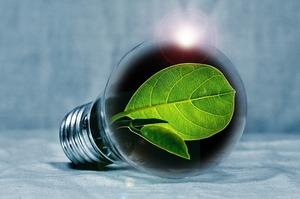 Додаткові 20 МВт біогазових потужностей встановлено за перше півріччя 2019 року – Держенергоефективності