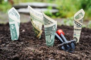 Бізнес налаштований оптимістично щодо інфляції, курсу та економічного зростання – опитування
