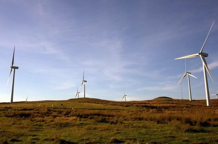 Шотландія виробила вдвічі більше вітрової енергії, ніж їй було потрібно