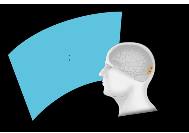 Ілон Маск представив технологію  Neuralink для підключення мозку до комп'ютера