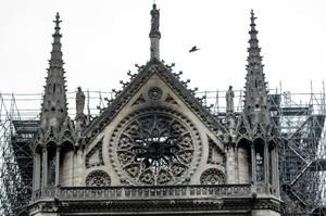 Навколо собору Паризької Богоматері зафіксували підвищений вміст свинцю – ЗМІ