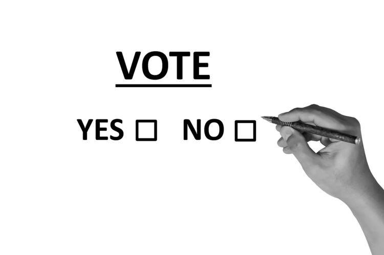 «Європейська солідарність» перемогла на закордонному виборчому окрузі