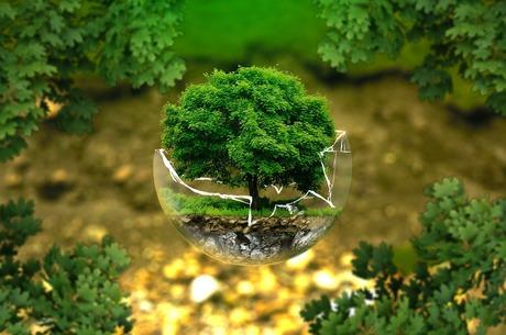 Как обезопасить «зеленую» энергетику от финансового коллапса