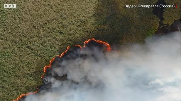 У Сибіру горить 3 млн гектарів лісу: Росії загрожує екологічна катастрофа
