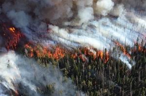 В російському МНС з'ясували основну причину пожеж у Сибіру