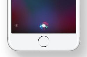 В США подали до суду на Apple через прослуховування користувачів за допомогою Siri