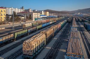 У Росії хочуть заборонити експорт лісу в Китай