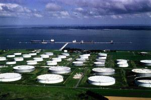 ОПЕК знизив оцінку росту попиту на нафту на 2019