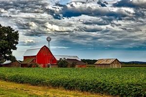 Жертви торгової війни: відмова Китаю від с/г продукції з США потопила фермерів Північної Дакоти