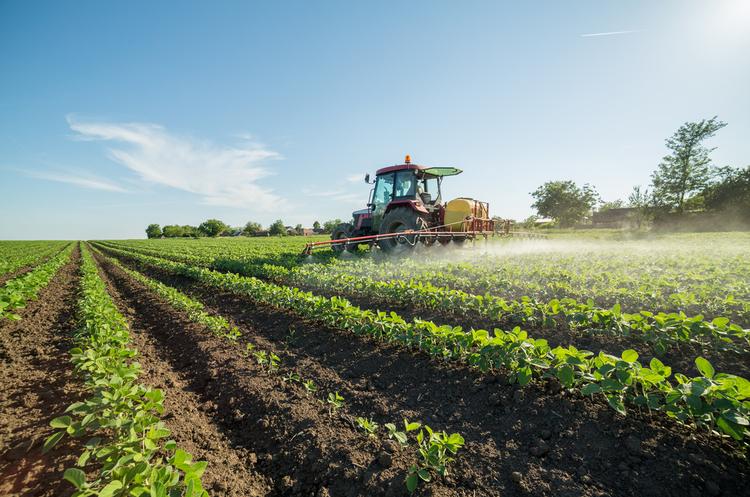 Німеччина заборонить гербіцид гліфосат, він же «Раундап», з 2023 року