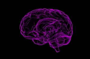 Українські інженери навчають штучний інтелект передбачати хворобу Альцгеймера
