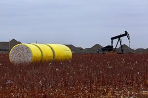Нафта торгується без коливань на тлі ознак прогресу переговорів між США і КНР