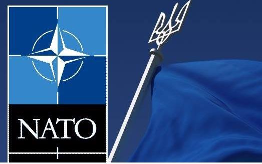 «Нас не чекають в НАТО»: представниця уряду в ВР сумнівається у курсі України щодо вступу в альянс