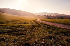 Відкриття ринку землі може суттєво вплинути на її орендну ставку – Яськів