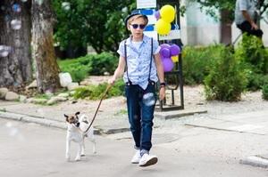 «Собака Електроніка 40 років по тому»: чим може бути цікавий український дитячий фільм «Фокстер і Макс»