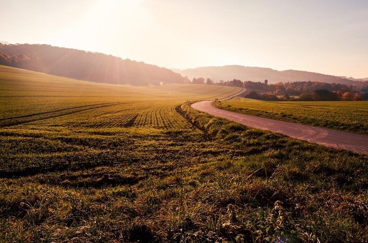 Проєкт закону про обіг земель сільгосппризначення зареєстровано у ВР