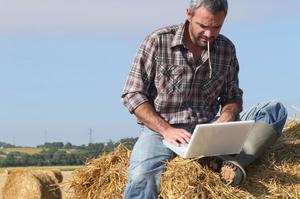 Очікування vs реальність: яка освіта насправді потрібна аграріям майбутнього