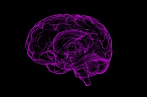 Секрет суперпамяти: как увеличить продуктивность мозга и успевать все