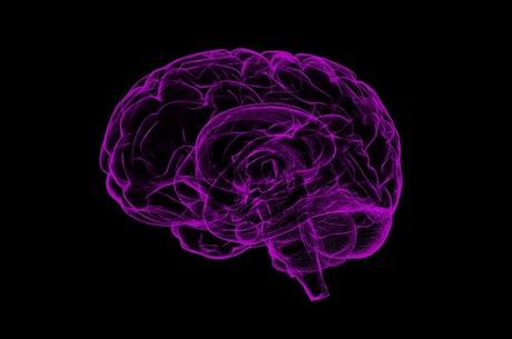 Секрет суперпам'яті: як збільшити продуктивність мозку і встигати все