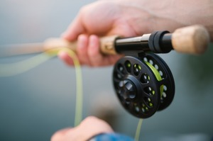 Право на вилов та роззедення риби можна буде отримати через платформу ProZorro – Мінекоенерго