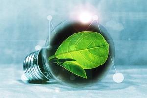 Глобальний екологічний фонд і ЄБРР виділять $55,8 млн на розвиток біоенергетики в Україні